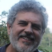 Vicente J. de Luis